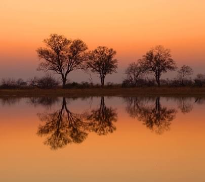 Landscape view of Botswana}