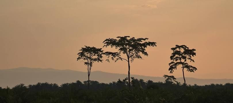 Landscape view of Burundi