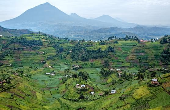 Landscape view of Rwanda}