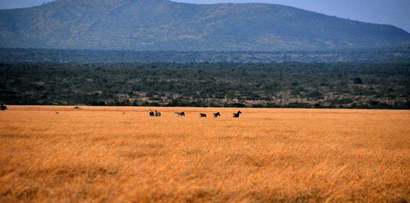 Landscape view of South Sudan}