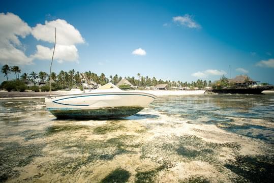 Landscape view of Tanzania}
